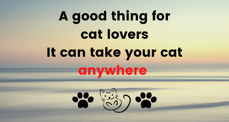 A good thing for cat lovers.It can take your cat anywhere.